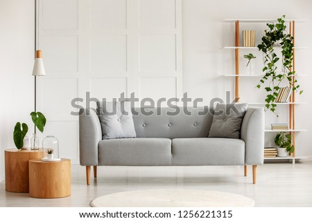 Two round coffee tables with plants in glass vases next to grey scandinavian sofa in elegant living room with wooden bookshelf with books an plants in pots