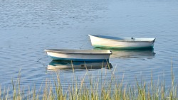 Two rowboats at anchor in early autumn.  Copy space.