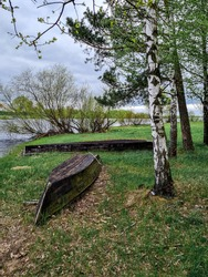 Two rowing wooden boats lie on the bank of the river on the green grass, tied by a chain to the castle to a birch. Spring day, the leaves are just beginning to bloom on the trees