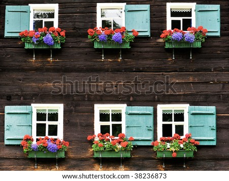 two rows of windows with flower decoration in textured wooden wall