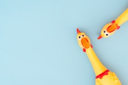 Two Rubber Chicken Toys on a Blue Background and Copyspace. Screaming rubber chicken toy on pastel blue background. Copyspace