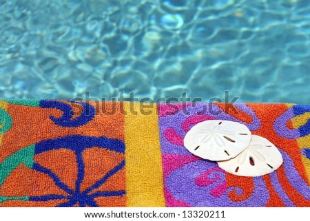 two sand dollars on beach towel and water