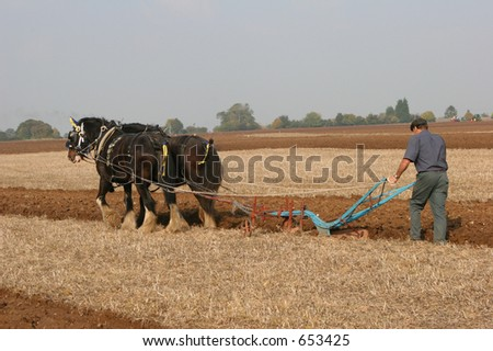 Two shirehorses & ploughman