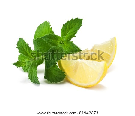 two slices of lemon and mint - stock photo