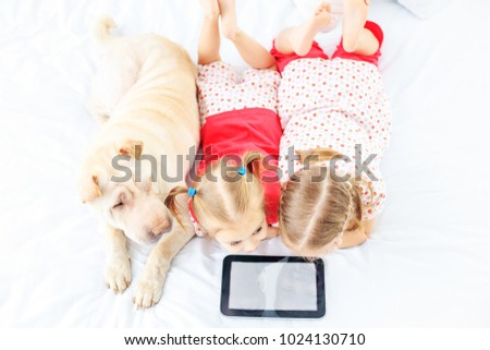 Stock Photo Two small children watch cartoons on the tablet. Sharpei's dog The concept of childhood, lifestyle, game.