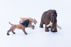 Two Smilodon saber-toothed roaring and attacking Big tusks Brown Mammoth toy on white background scene