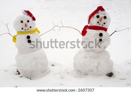 Two Snowmen - A lovely couple ( snowman )