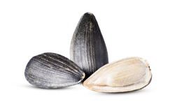 Two sunflower seed with one cracked in the foreground closeup isolated on white background