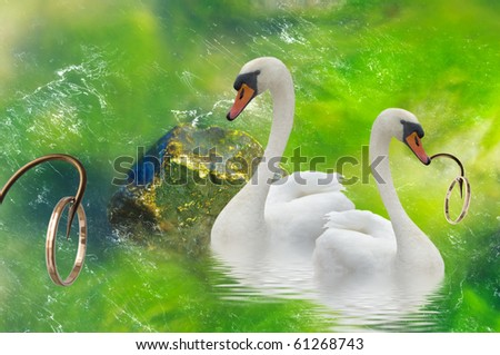 Two swans and gold rings on a hooks.