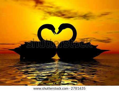 Two swans forming a heart under the sunset