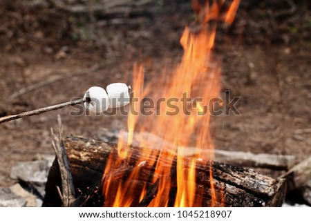 Two toasted marshmallows on a stick over a bonfire at the camp grounds.