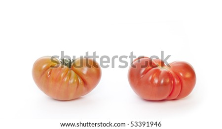 Two tomatoes isolated in white background