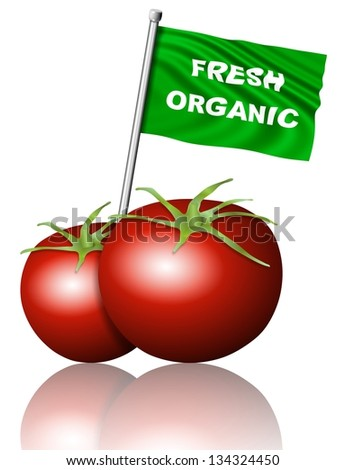 Two tomatoes with a fresh organic flag / Fresh organic food