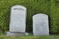 Two tombstones in front of a hedge