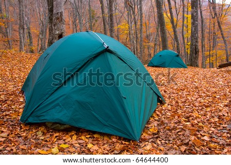 Two tourist tents in autumn forest camp