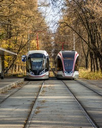 Two trams on tram station. Tram arrives to tram stop. Autumn tram track park.