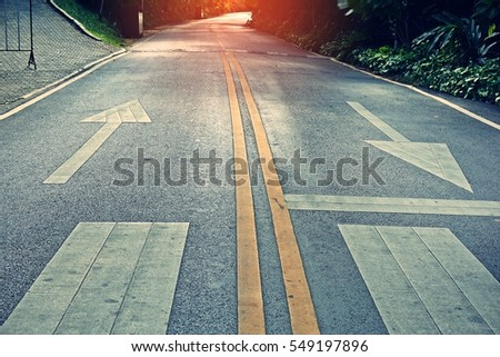 two-way traffic signs painted on a concrete road separated by two yellow continuous lines  #549197896
