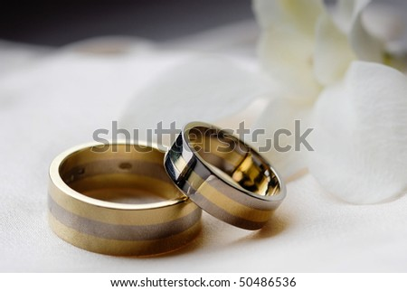 Two wedding rings laying on wedding dress