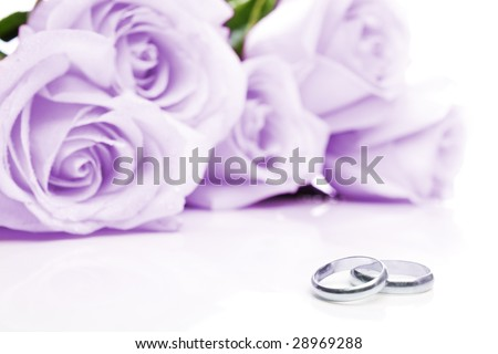 stock photo Two wedding rings made of white gold and purple roses in