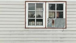 two windows on wood wall