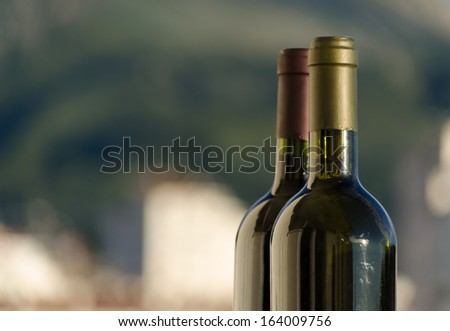 Two wine bottle necks with the white and green blurry background