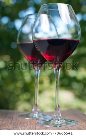 Two wine glasses in the garden