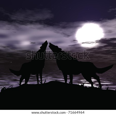 two wolves in the night sky with full moon - stock photo