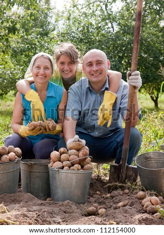 Two women and man harvesting potatoes in field