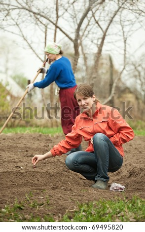 Two women checkrows set onion in bed at field