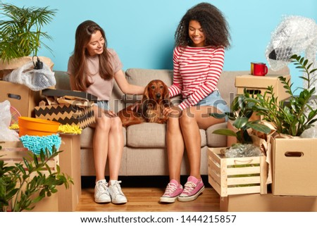 Two women friends relax on sofa together, play with pedigree dog, surrounded with unopened boxes, move in new flat, want to organize housewarming party and invite companions. Moving, home concept #1444215857