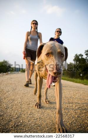 two women walking a dog