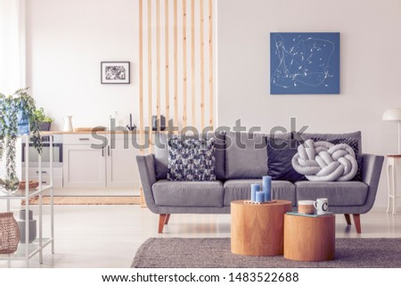 Two wooden block shape like coffee tables with kinck knacks in front of grey scandinavian sofa with pillows #1483522688