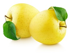 Two yellow apple fruit with green leaf isolated on white background. Golden apples with clipping path. Full Depth of Field