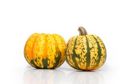 Two yellow-green pumpkin on a white background. Colored vegetable with stalk