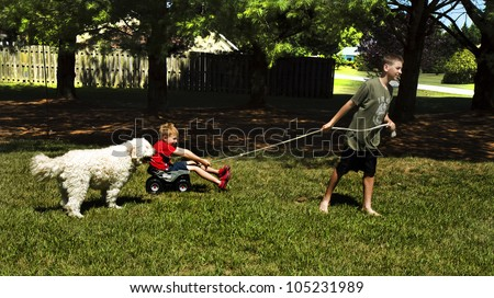 Two young boys playing/dragging each other with rope in backyard while dog chases after them