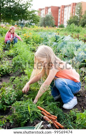 Two young girls working in vegetable garden