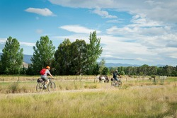 Two young people cycling the Otago Central Rail Trail with horses grazing by the side of the track, South Island, New Zealand