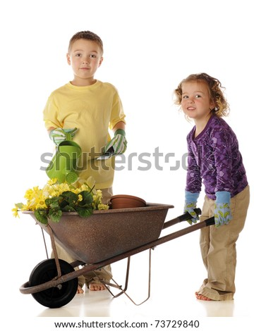 Two young siblings with a wheelbarrow, spring flowers and tools.  Isolated on white.