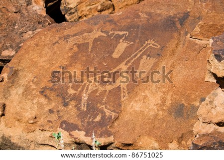 Twyfelfontein, Rock Engravings with Footprints and Giraffe - stock photo