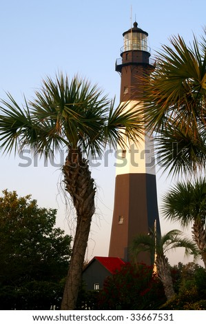 Tybee Island Lighthouse Through the Palm Trees, Near Savannah, GA Vertical