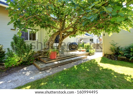 Typical American backyard of the small old craftsman style home in NorthWest of USA.