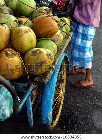 Typical coconut vendor with sarong