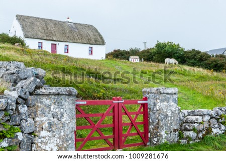 Typical cottage house with stone wall and red fence on The Aran Islands, a group of three islands located at the mouth of Galway Bay, on the west coast of Ireland.