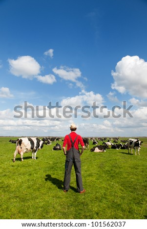 Typical Dutch landscape with farmer and black and white cows in the meadows