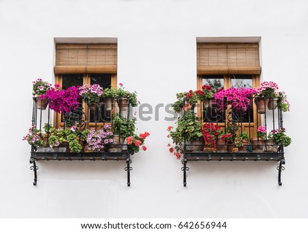 Typical European Window on Building with Balcony and Flowers #642656944