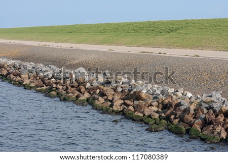 Typical example of a straight Dutch dike