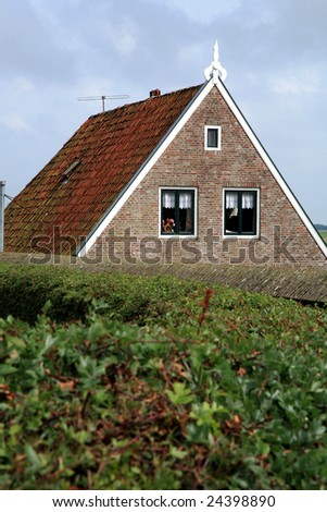 Typical Frisian houses in Sloten - Netherlands