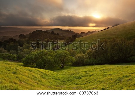 Typical hilly California chaparral meadow at sunset on foggy day