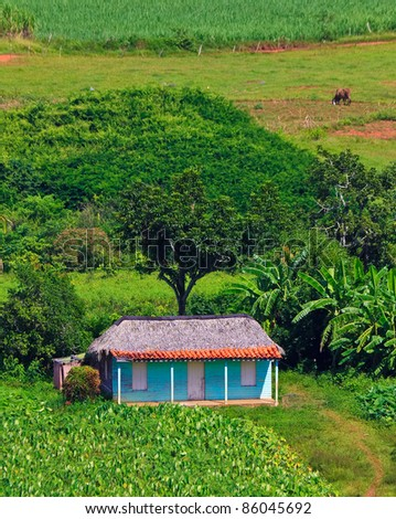 Typical house in the cuban Viñales valley
