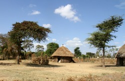 Typical house of african village